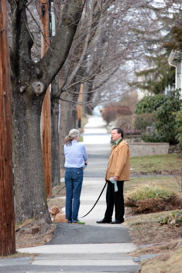 Neighbors stop for a chat while out walking their dogs. March 12, 2012.