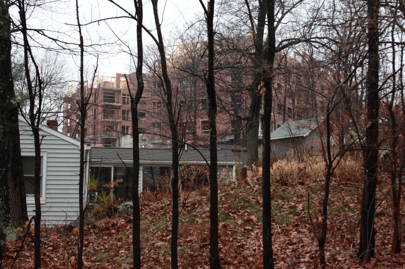 A view of the project at the former Symmes site through the trees from Woodside Lane.December 8, 2012.