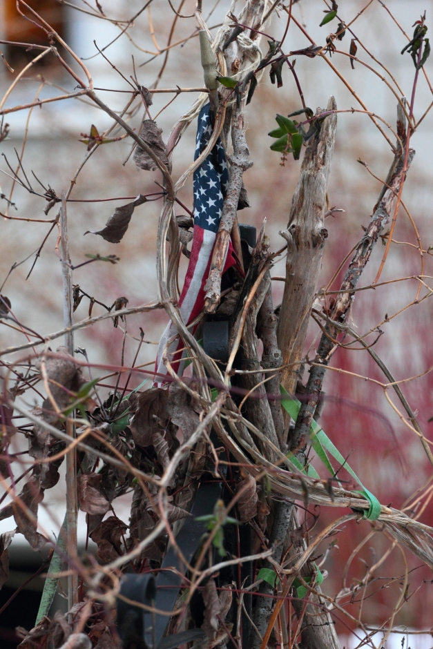 Climbing vines surround a small flag in the front yard of  Millett Street home.February 25, 2013.