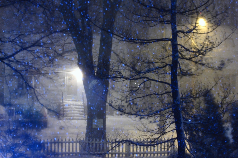 Snow falls through the night during the first major storm of 2013.February 8, 2013
