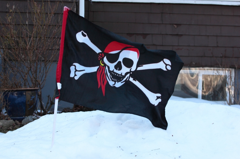 A pirate flag flying from the snowbank of a Lake Street home.February 15, 2013.