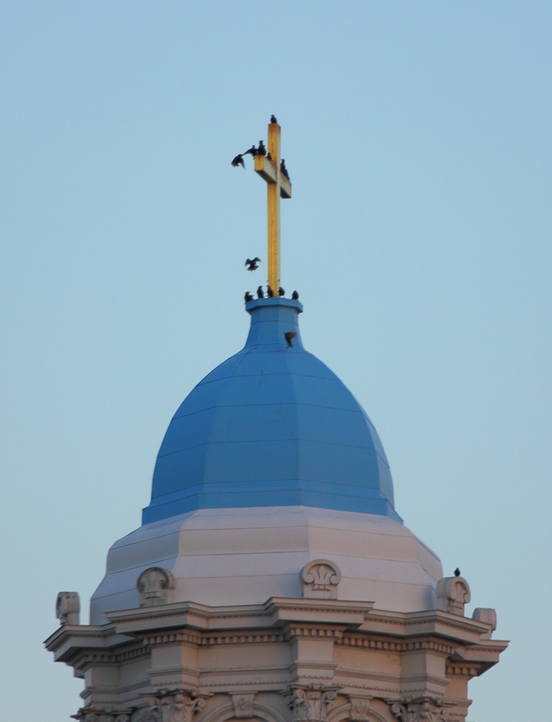 Birds rest atop the steeple of the Highrock church on Massachusetts Avenue.December 14, 2012.