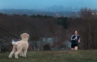 A dog watches intently as a young woman emerges up the hill at Skyline Park while doing her exercise routine. April 9, 2013.