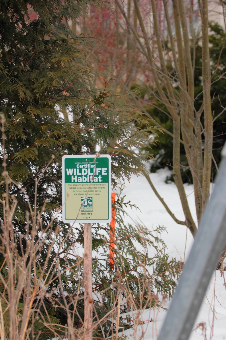 A sign for a NFW certified habitat on Millett Street. February 25, 2013.
