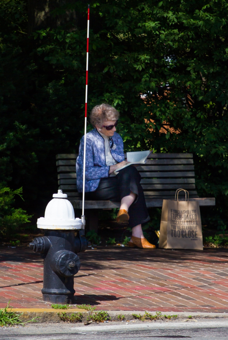 A woman reads on a bench in Arlington Center, staying out of direct sunlight on a 95˚ day. July 5, 2013.