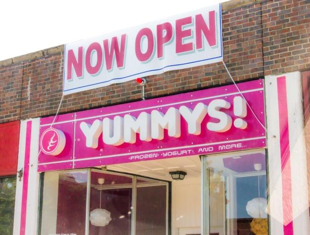 A new frozen yogurt shop on Massachusetts Avenue in Arlington Center. August 14, 2013.