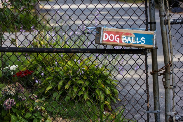 An old Pepsi crate repurposed as a dog ball repository at Spy Pond Field. September 12, 2013.