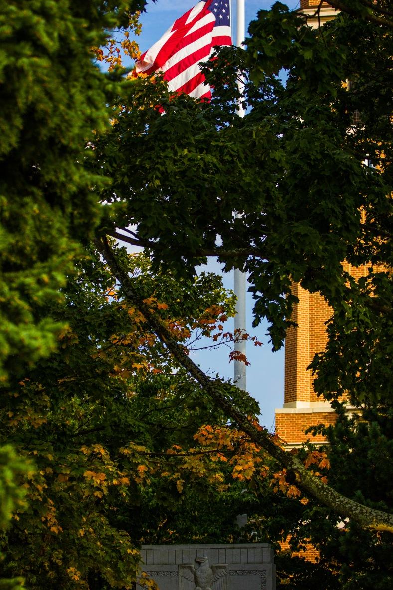 Leaves starting to change color over Arlington's Verterans' Memorial. September 12, 2013.