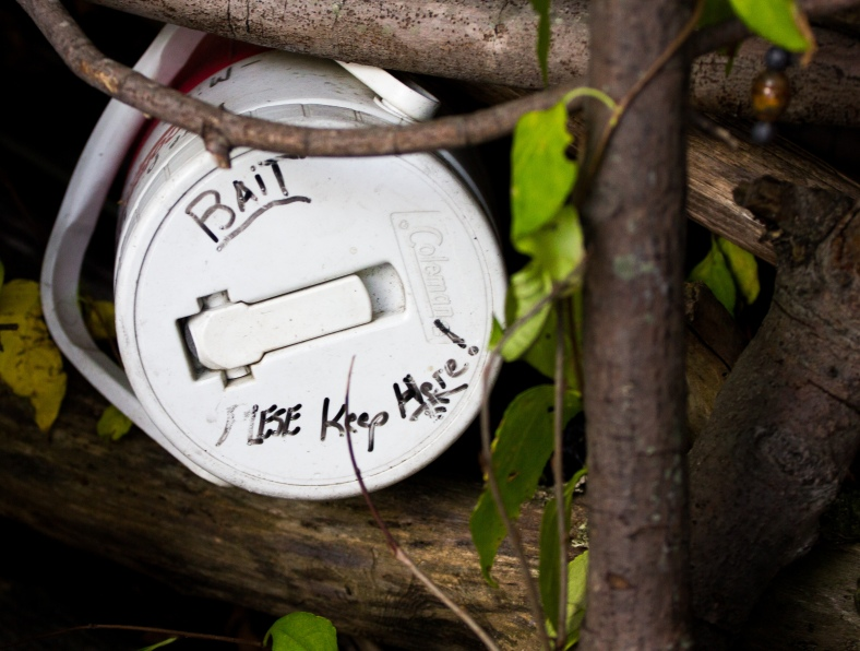 A water jug containing fishing bait wedged into a wall of sticks along the banks of the Lower Mystic Lake. October 3, 2013.