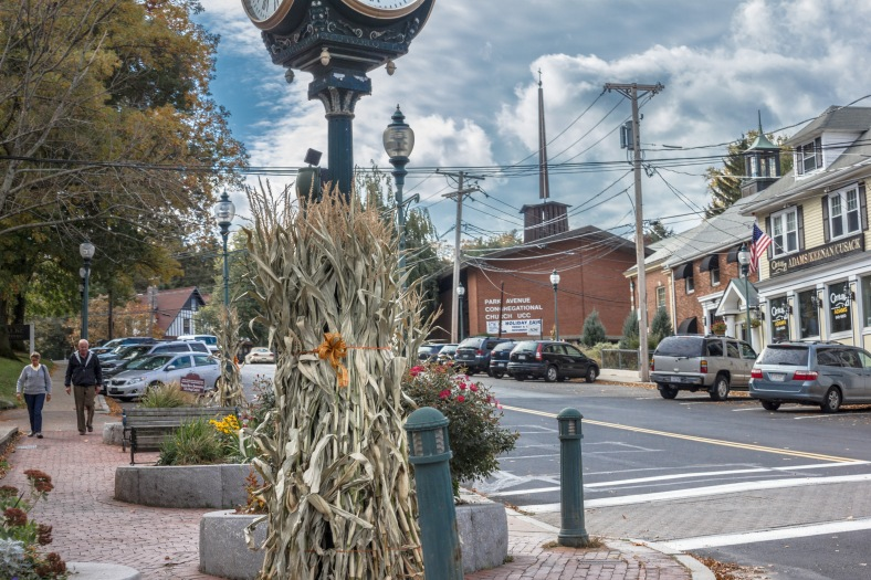 Dried cornstalks decorate posts in Arlington Heights. October 22, 2013.