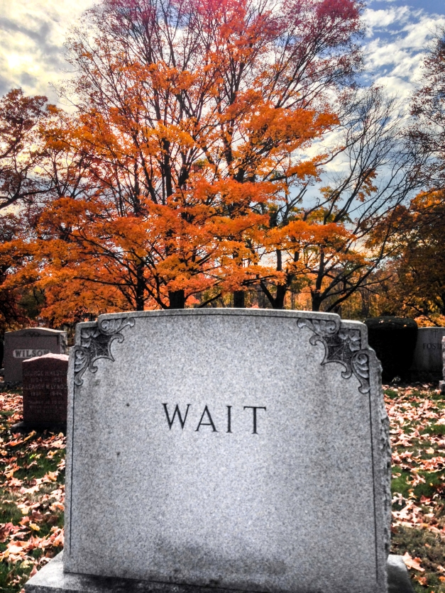 A gravestone in Mount Pleasant Cemetery. November 2, 2013.