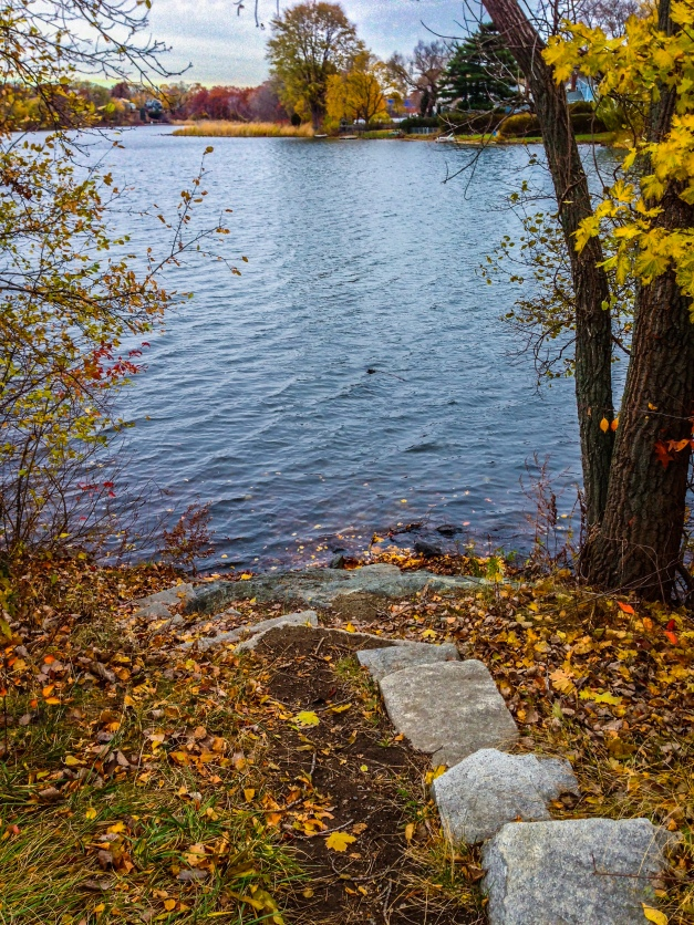 Stones stacked as steps set into the bank of Spy Pond along the walkway adjacent Route 2. November 12, 2013.