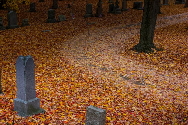 A road covered in fallen leaves curves past headstones in St. Paul Cemetery. October 22, 2013.