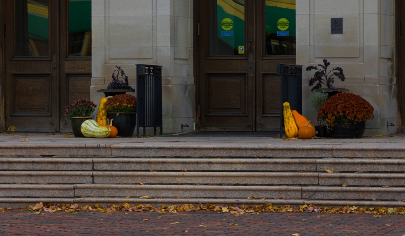 Decorations for the fall at the main entrance of Arlington's Town Hall. November 15, 2013.