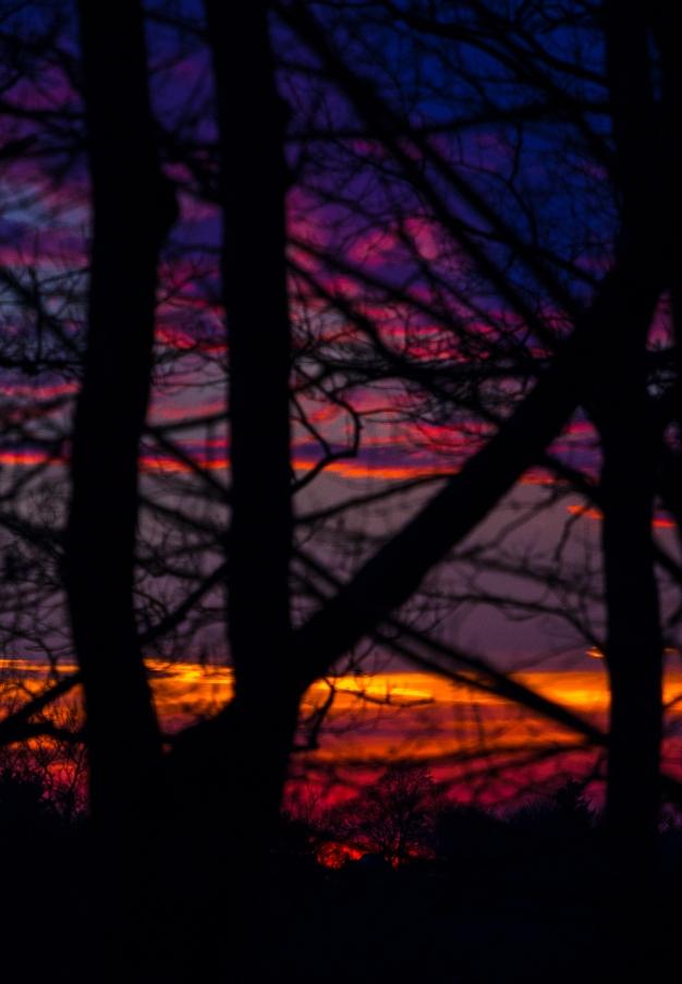 A fiery sunset lights up the Arlington sky. December 4, 2013.