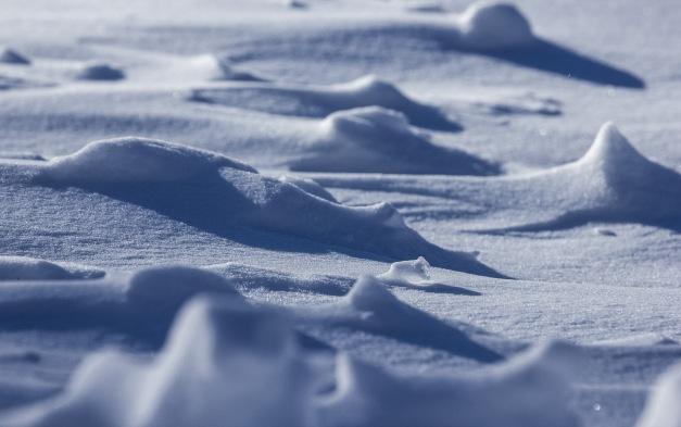 The sun create shadows on the freshly fallen snow. January 3, 2014.