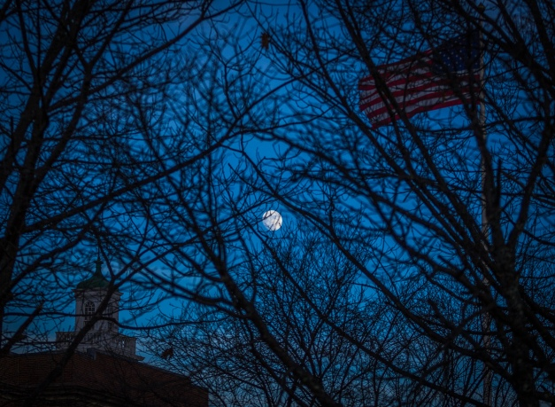 The Moon seen through the tree in front of Arlington High School. January 13, 2014.