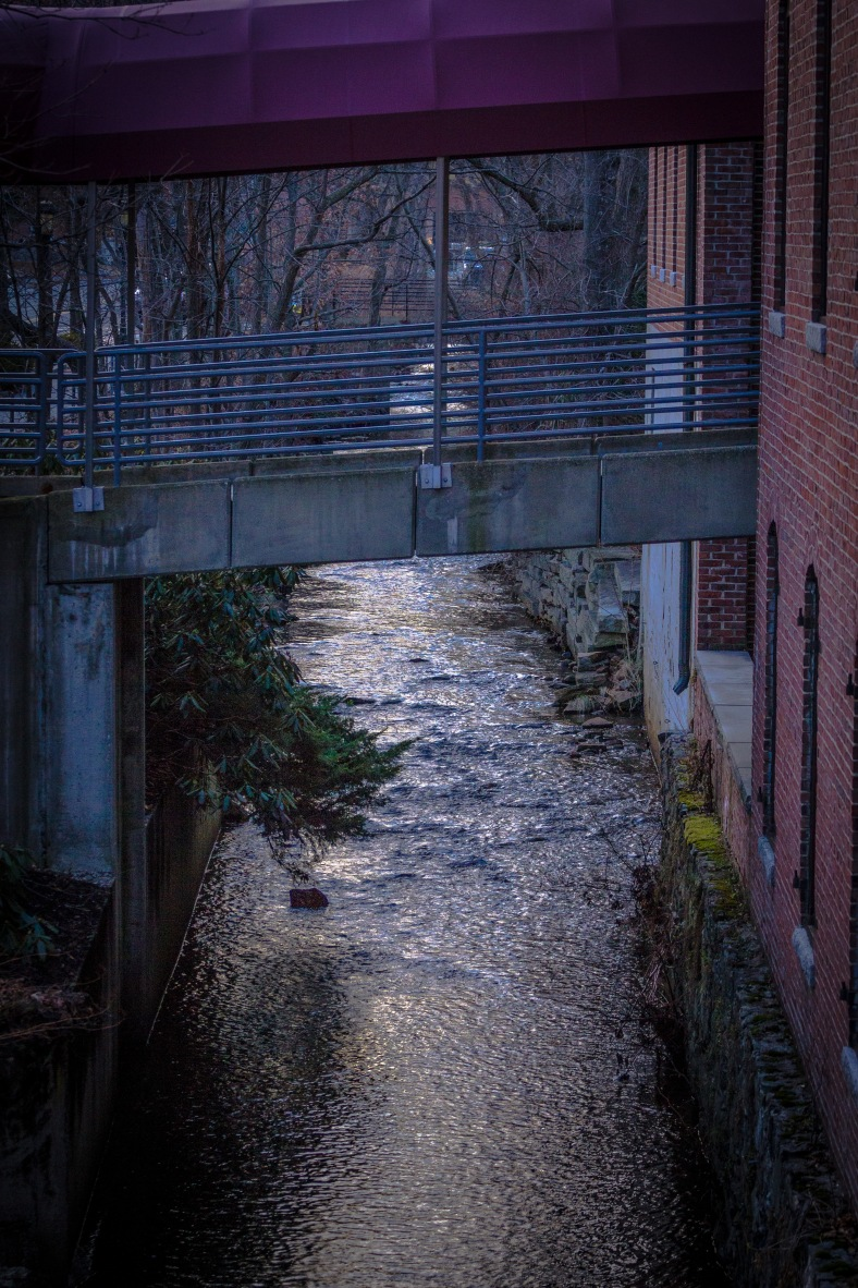 Mill Brook flows under the covered walkway to that leads to the Mill Street Professional Building. January 13, 2014.