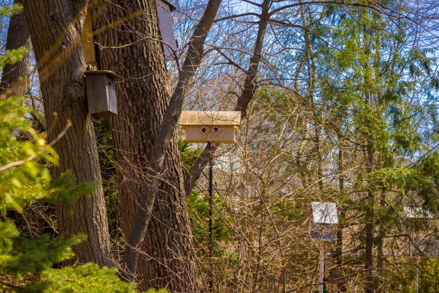 Some of the many birdhouses in the yard of a Stone Road home. April 12, 2014.