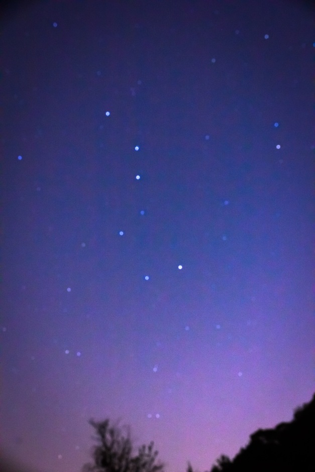 The big dipper in the sky over Menotomy Rocks Park. June 1, 2014.
