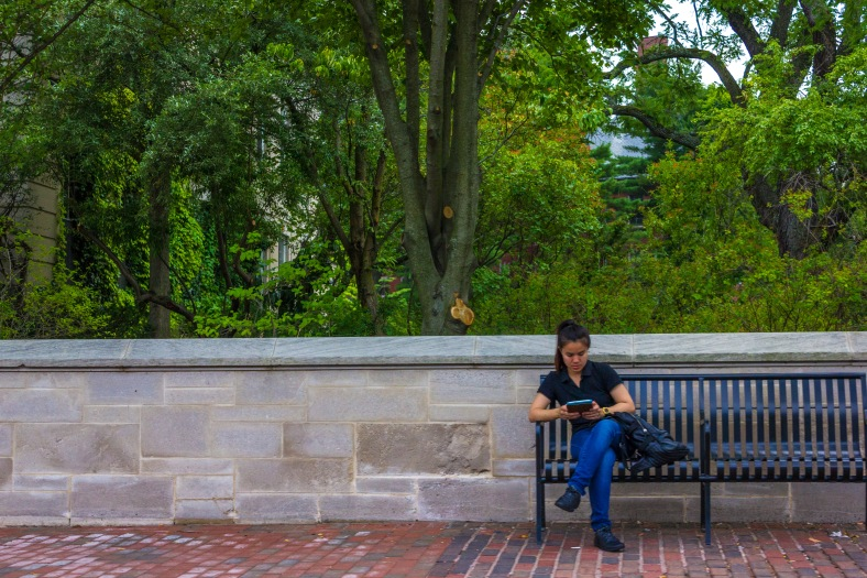A woman reads on an electronic device while sitting on one of the benches installed outside of Town Hall. August 01, 2014.