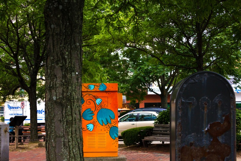 A painted utility box brightening up Arlington Center on an overcast day. August 01, 2014.