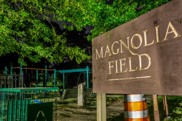The entrance to Magnolia Field in East Arlington at the end of Magnolia Street. August 25, 2014.