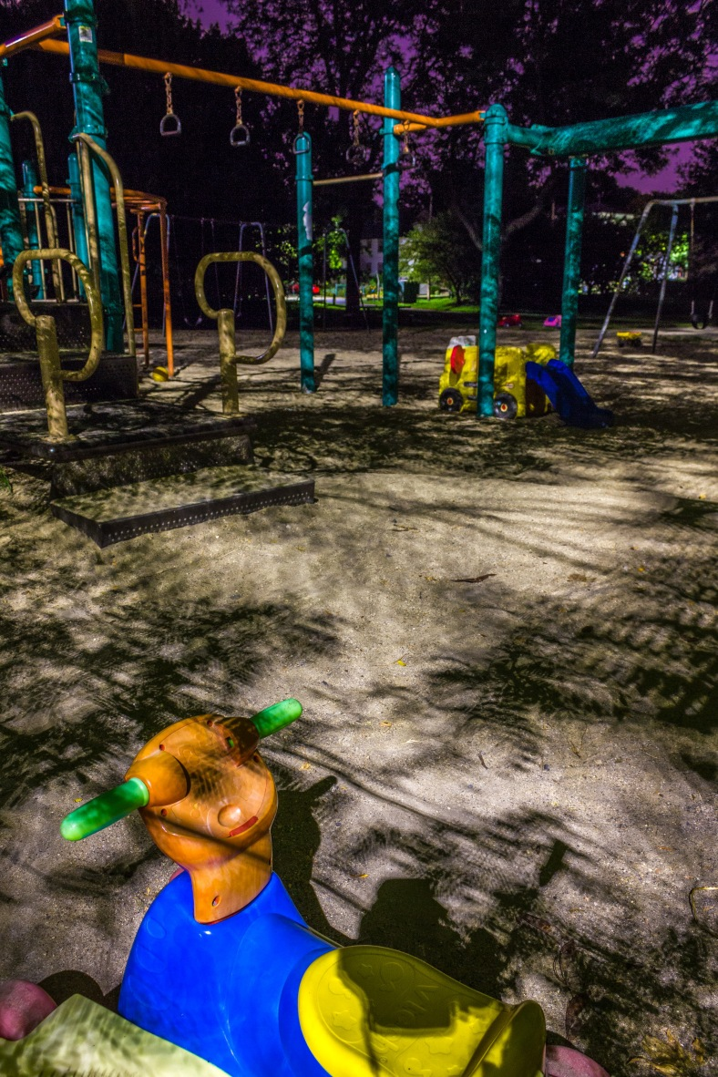 A toy left overnight at the Magnolia Field playground.. August 25, 2014.