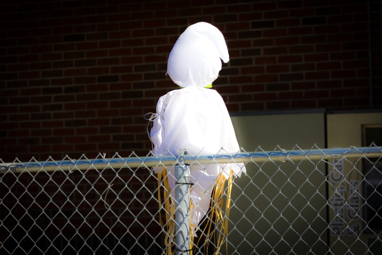 What apparently is the ghost of a scarecrow affixed to the fence outside of Whole Foods. September 26, 2014.
