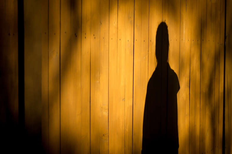 A woman casts a shadow on a fence as she waits at a 67 bus stop on Washington Street. October 17, 2014.