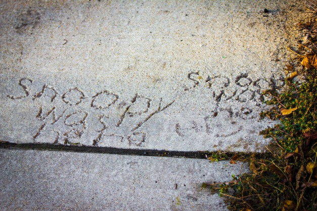 """Snoopy""decided to sign a square of sidewalk cement (twice) along Washington Street. October 17, 2014."