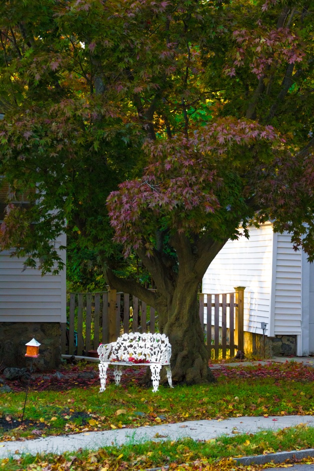 A nice place to sit and relax in a yard along Washington Street. October 17, 2014.