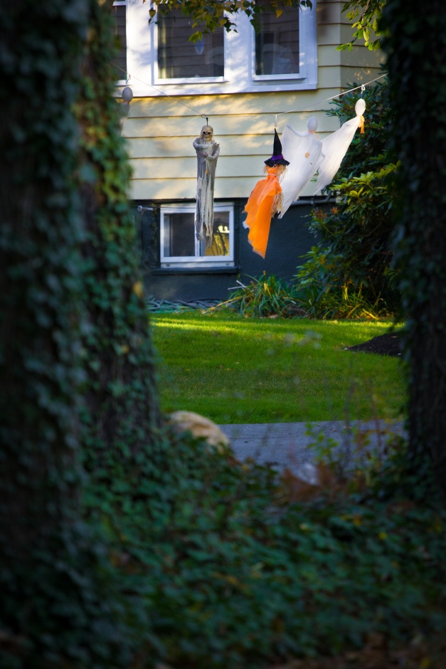 Halloween decorations in the yard of a Pheasant Avenue home. October 17, 2014.