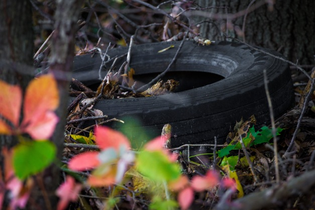 "One of at least two tires left under a ""no dumping"" sign (see ""Ingrown"" one post prior) on a wooded area along Mountain Avenue. October 17, 2014."