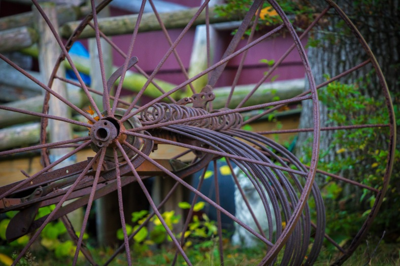 Old, rusted farm equipment sits as a lawn decoration in front of a Mountain Avenue home. October 17, 2014.