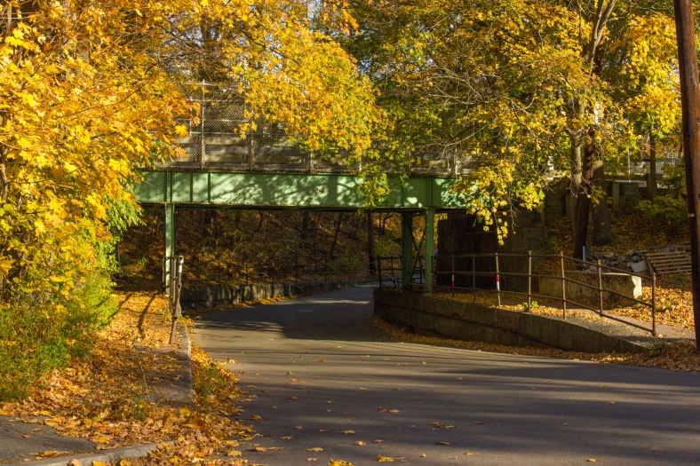 The bridge that brings the Minuteman Bikeway across the span of Forest Street. November 10, 2014.