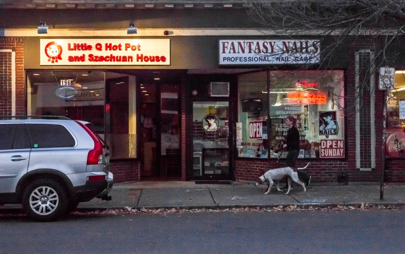 A woman walks her dog past businesses in Capitol Square. November 10, 2014.