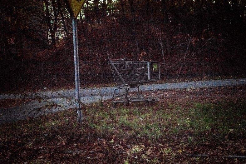 An abandoned shopping cart next to the Minuteman Bikeway. November 10, 2014.