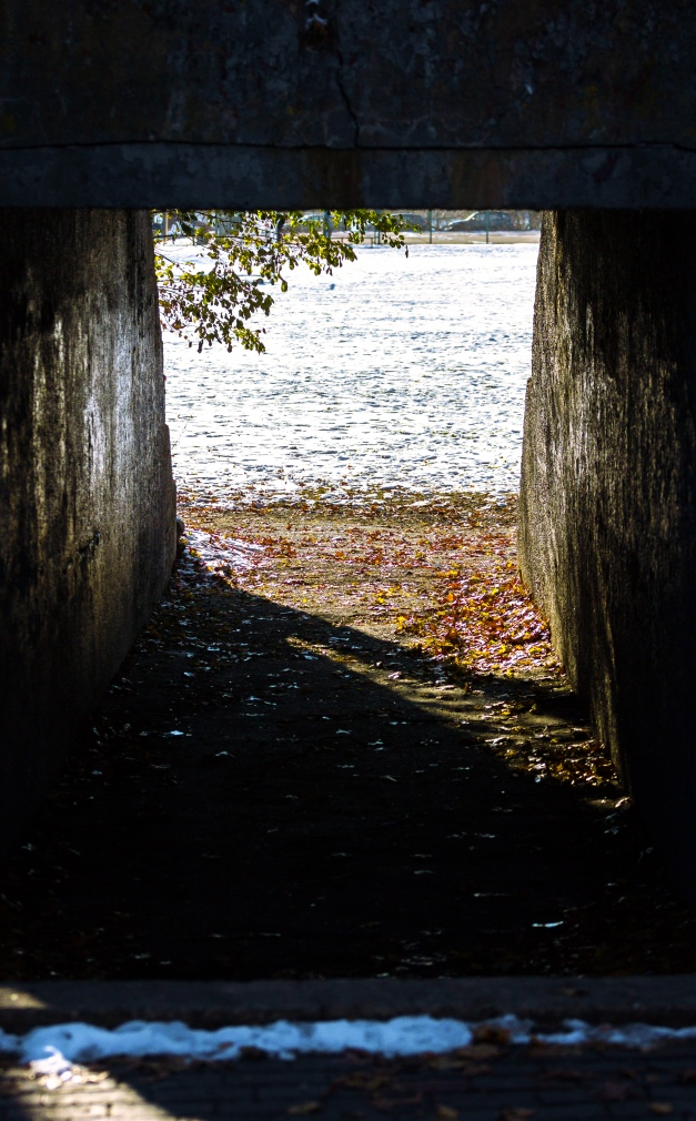 A tunnel under the Minuteman Bikeway leading out onto Spy Pond Field. November 29, 2014.
