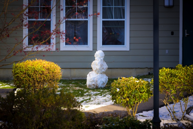 A snowman visible from the Minuteman Bikeway in Arlington Center. November 29, 2014.