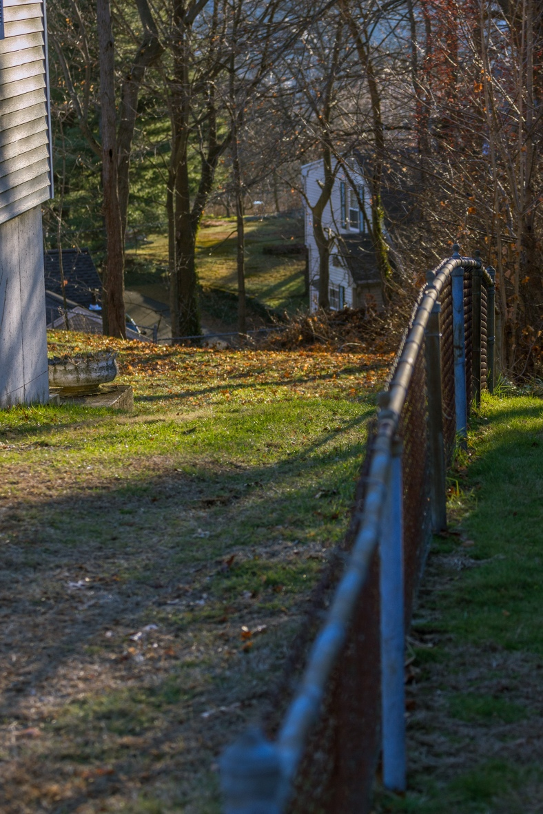 Back yards in the rolling hills of the Washington Street area. December 26, 2014.