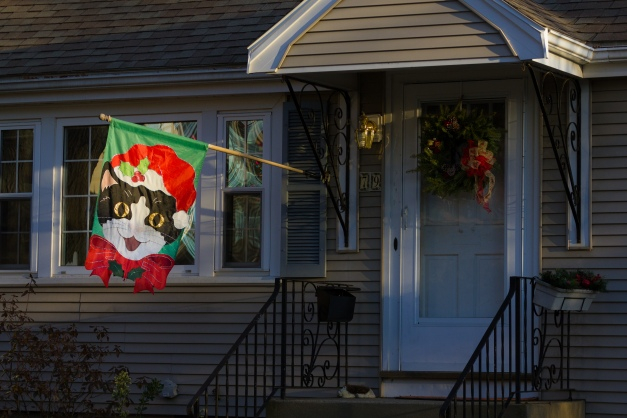 A feline themed Christmas flag outside a Charles Street home. December 26, 2014.