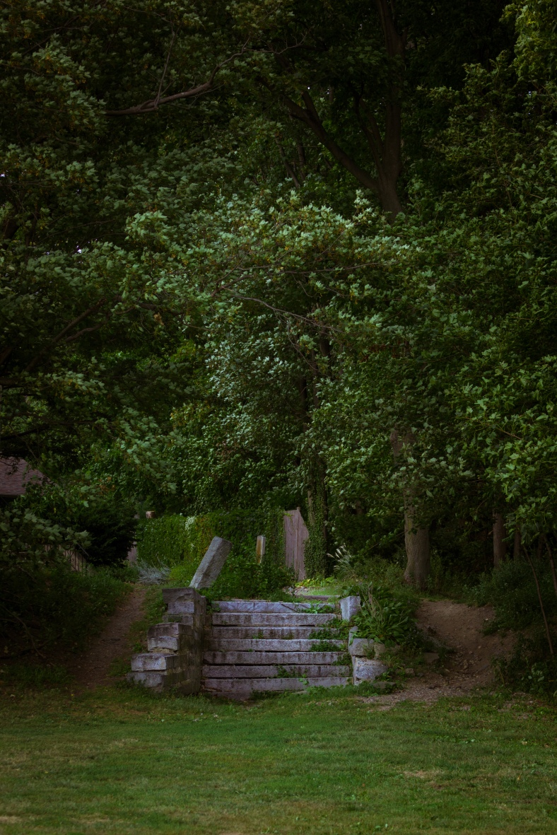 Steps, perhaps a relic of the railroad, in the corner of Spy Pond field. September 12, 2013.