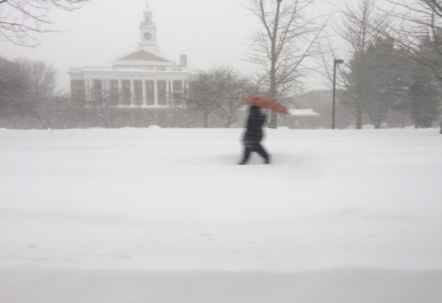 A person walks past Arlington High School trying to shield themselves from the blowing snow with an umbrella. February 2, 2015.