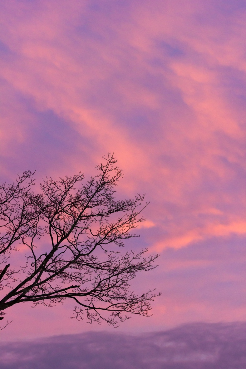 The pleasant colors of a winter sunset. February 10, 2015.