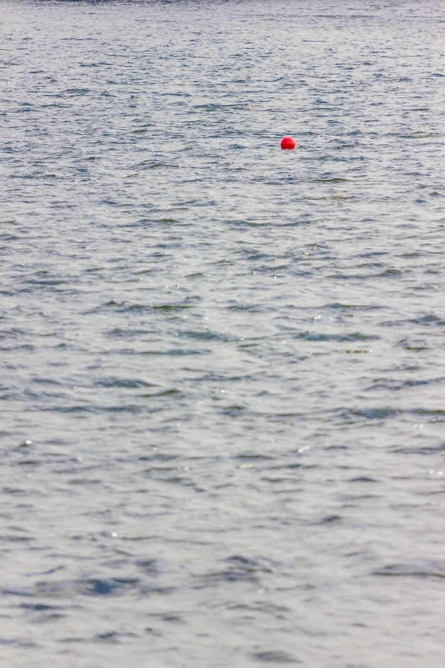 A bouy on Spy Pond. September 12, 2013.
