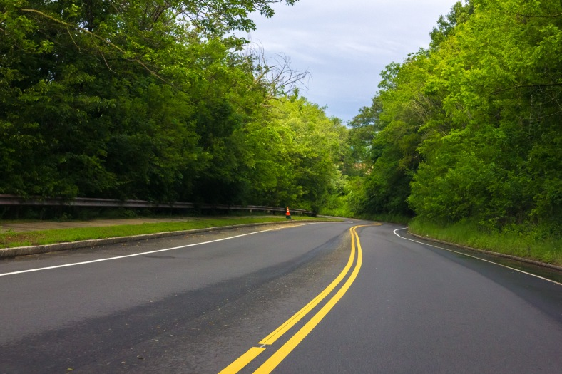 A verdant stretch of the Mystic Valley Parkway. June 10, 2014.