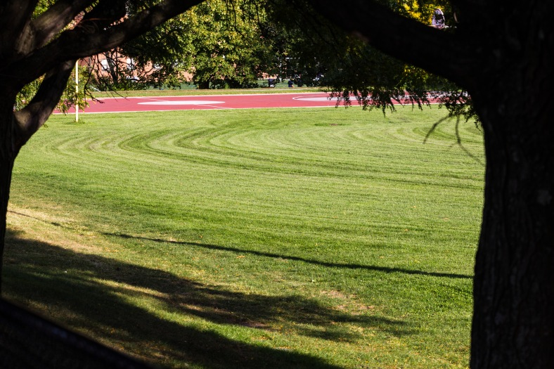 Mowing patterns on Buzzell Field. October 03, 2013.