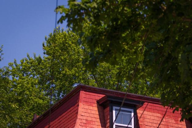 A red mansard roof of Warren Street. July 11, 2015.