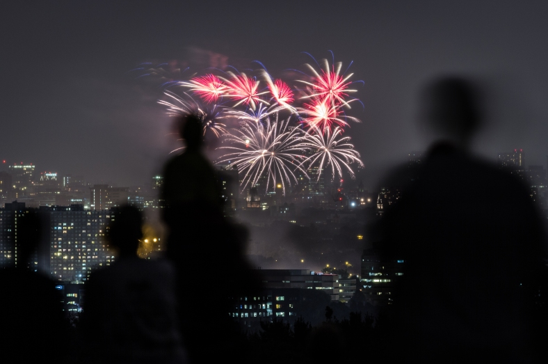 People watch Boston's fireworks from Robbins Farm Park, a yearly tradition for many Arlingtonians. July 04, 2012.